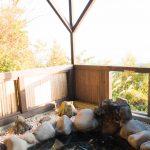 伊豆高原 犬連れ温泉旅行 玉響の風(2)